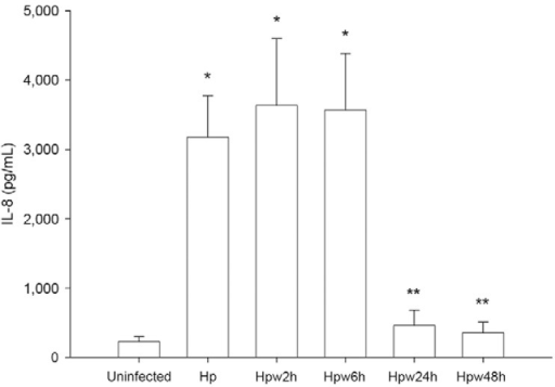 : effect of water exposure on Helicobacter pyloriinduction of interleukin (IL)-8 secretion by host epithelial cells. AGS cellswere infected with H. pylori 26695 inocula that have beenexposed to water for 2 h (Hpw2h), 6 h (Hpw6h), 24 h (Hpw24h) and 48 h (Hpw48h)at a multiplicity of infection of 100. As control, H. pylori26695 that was not exposed to the water was used (Hp). IL-8 productionwas evaluated by ELISA. Graphics represent mean ± standard deviation and arerepresentative of three independent experiments. *: significantly differentfrom uninfected cells; **: significantly different from non-exposed H.pylori (p < 0.05).