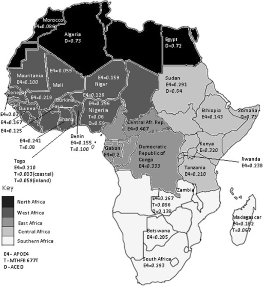 Distribution of the APOE ε4, MTHFR 677 T and ACE D allele frequencies in the African populations.