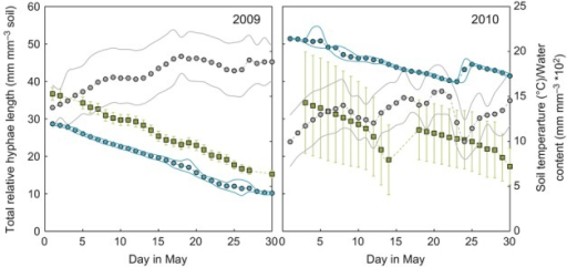 Mean total relative hyphal length (gray squares; mm mm−3 soil) of arbuscular mycorrhizal fungi during the month of May 2009 and 2010. Error bars are ± 1SE. Soil temperature (gray circles; °C) and soil water content (blue circles; mm mm−3 × 102) at 16 cm depth on secondary y-axis with solid lines showing ± 1SD.