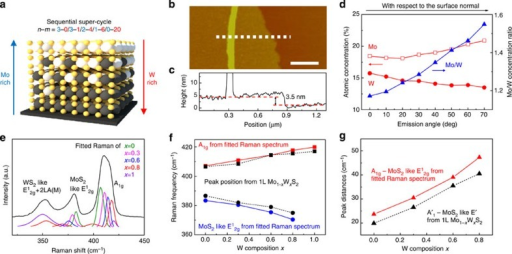 Characterization of VCC Mo1−xWxS2 multilayer.(a) Sequential super-cycle ALD procedure and schematic structure of a VCC Mo1−xWxS2 multilayer. (b) AFM image and (c) height profiles (along with white dashed line in AFM image) for a VCC Mo1−xWxS2 multilayer. Scale bars, 0.5 μm. (d) Calculated atomic concentration and relative concentration ratio of Mo and W from ARXPS measurement. (e) Raman spectra for a VCC Mo1−xWxS2 multilayer. (f) Raman peak position of A1g and MoS2-like E12g modes from fitted Raman spectra (red and blue solid line) and from measured Raman spectra of 1l Mo1−xWxS2 alloy (black dashed line). (g) Calculated Raman peak distances between A1g and MoS2-like E12g modes from fitted Raman spectra (red solid line) and from measured Raman spectra of 1l Mo1−xWxS2 alloy (black dashed line).