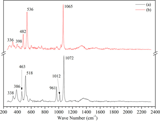 Raman spectra of the simulated product (a) and salt deposition (b).