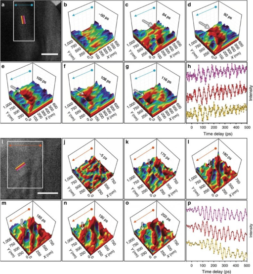 Real-space femtosecond electron imaging of single-phonon wavefronts in Ge and WSe2.(a,i) Bright-field images of the Ge and WSe2 regions shown in Fig. 1 and obtained at −50 and −5-ps time delays, respectively. For the Ge experiments, the images were acquired with a 25-kHz repetition rate and a 13-s integration time per frame. For WSe2, the images were also acquired with a 25-kHz repetition rate but with an 18-s integration time per frame (see also the captions for Supplementary Videos 1 and 2 for further experimental details). The three coloured lines mark regions from which the mean intensity was quantified and used to generate the time traces in h and p (described below). The propagation direction is perpendicular to the coloured lines. Scale bars, 500 nm. (b–g) and (j–o) Surface plots generated from an image series (region of interest=white rectangles in a and i) highlighting approximately one period of wavetrain propagation, with a pre-time-zero frame included for reference. Motion of individual wavefronts, which appear as a continuous, deep-red depression, is indicated by the white arrows. The blue and orange arrows map the orientation to the two-dimensional images shown in a and i. (h,p) Image-intensity measurements, obtained at the coloured lines in a and i, as a function of time delay (offset for clarity).