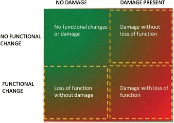 Diagnosis of AKI based on functional and damage markers. The combination of functional and damage biomarkers allows the clinician to diagnose AKI earlier and to differentiate the disease process better. It is recognised that the process is dynamic and that patients may move from one phase to another. Reproduced with permission from http://www.adqi.org/