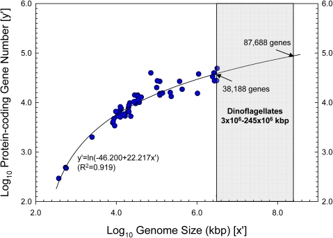 Logarithmic regression model for log10-transformed eukaryotic gene number (y′) versus log10-transformed genome size (x′).Range of dinoflagellate genome size (3×106–245×106 kbp) is indicated by the shaded areas. The predicted gene numbers for the recognized smallest (38,188) and largest (87,688) dinoflagellate genomes correspond to their gene-coding percentages shown in Fig. 2B.