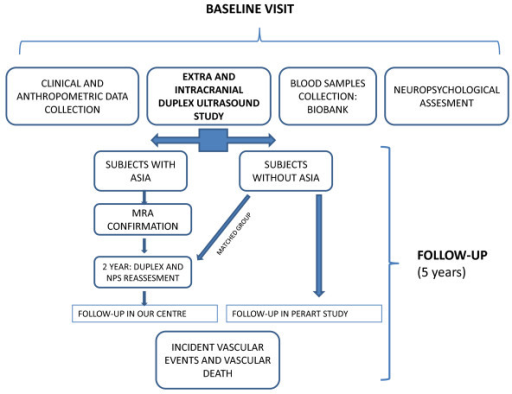 ASIA study flow chart. The diagram shows baseline procedures and follow-up in ASIA study. Subjects with asymptomatic intracranial atherostenoses (ASIA) in basal ultrasound study will undergo a Magnetic Resonance Angiograph (MRA) and will be followed annually in our centre. Two years after inclusion a new duplex and NPS (neuropsychological) study will be performed. Subjects without ASIA will be followed in PERART study.