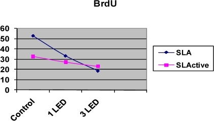 BrdU incorporation in osteoblast-like cells