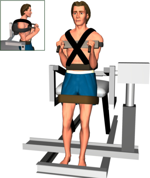 Testing position in neutral standing posture with and without mechanical vibration.