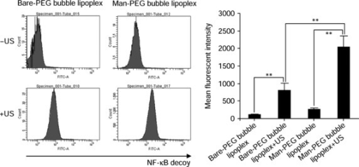 In vivo transfection efficiency of the nuclear factor-κB (NF-κB) decoy into tumor-associated macrophages by ultrasound (US)-responsive and mannose-unmodified liposome/NF-κB decoy com-plexes (Bare-PEG bubble lipoplexes) and ultrasound (US)-responsive and mannose-modified liposome/NF-κB decoy complexes (Man-PEG bubble lipoplexes) (10 μg NF-κB decoy) with (+) or without (−) US exposure. Fluorescent intensity of the FAM-labeled NF-κB decoy in tumor-associated macrophages at 1 h after addition of bubble lipoplexes. **P < 0.01.