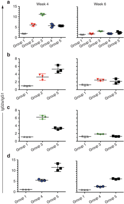 IgG isotype analysis of antibody responses indicates a Th1-biased response. Sera from immunized mice at weeks 4 and 6 were pooled and tested for their IgG1 and IgG2a responses to (a) RABV-G, (b) HC50/A, (c) HC50/B, and (d) HC50/E, and presented as the ratio of the optical densities corresponding to the IgG2a to IgG1-specific enzyme-linked immunosorbent assay signals for the specific antigen (each panel represents one antigen). Only the groups with immune responses to the specific antigens, as grouped by panel, were assayed.