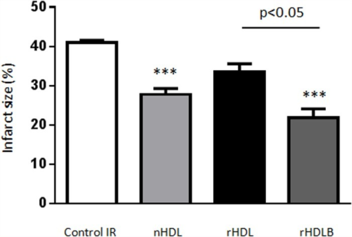 rHDL containing S1P protect against ischemia reperfusion injury ex vivo.Isolated hearts were submitted to global ischemia (35min) followed by reperfusion (45min). At the onset of reperfusion, hearts were treated or not (control) with native HDL (nHDL), rHDL (apoAI+POPC) or rHDLB (apoAI + POPC + S1P) during the first 7min. Infarct size is expressed as percentage of total heart area, (mean±SEM). ***p<0.001 vs control using one-way ANOVA combined with Tukey multiple comparisons post-hoc test, n≥4.