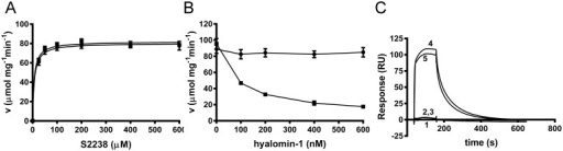 Hyalomin-1 does not inhibit or interact with γ-thrombin.(A) Steady state kinetic analysis of γ-thrombin in the absence (filled circles) or presence (filled squares) of 600 nM hyalomin-1. (B) γ-Thrombin (black circles) and α-thrombin (black squares)-catalyzed hydrolysis S2238 (50 μM) in the presence of hyalomin-1. (C) Binding of γ-thrombin and α-thrombin to immobilized hyalomin-1 measured by SPR. Buffer alone (1), 50 nM γ-thrombin (2), 100 nM γ-thrombin (3), 50 nM α-thrombin (4), 100 nM α-thrombin (5).