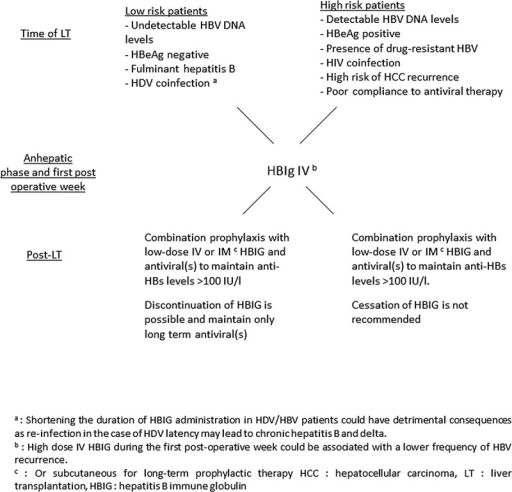 Prophylaxis for prevention of HBV graft recurrence after LT. Proposal for guideline.