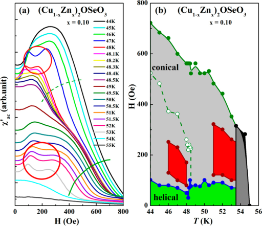 (a) χ′ac vs. H of at temperatures 44–55 K and (b) corresponding H vs. T phase diagram for (Cu1−xZnx)2OSeO3 (x = 0.1). The two red circles in (a) corresponding to respective skyrmion zones in (b). Solid and dashed green lines denote the conical phase boundaries.