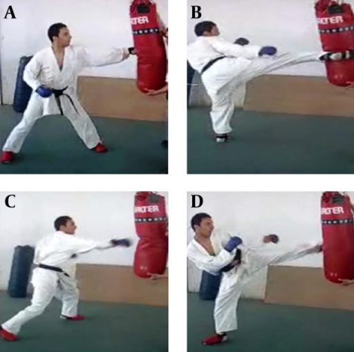 Techniques Used During the Karate Specific Aerobic Test (KSAT)A, kizami-tsuki (straight punch); B, mawashi-geri (rear leg roundhousekick); C, kyaku-zuki (rear straight punch); and D, kiza-mawashi-geri (leadingroundhouse kick).