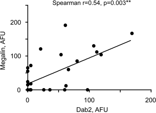 Correlation of megalin and Dab2 abundance in brush border area of syncytiotrophoblast.Correlation between amounts of Megalin and Dab2 was assessed using Spearman's rank correlation coefficient (r). Megalin and Dab 2 abundance in all placentas (n = 28) was measured in arbitrary fluorescence units (AFU) using immunofluorescence assay as described in Methods. Six study participants (4 with PE and hemozoin, 1 with hemozoin only, and 1 without PE or hemozoin) did not have detectable megalin and Dab2. Line indicates linear regression, slope = 0.77 + 0.19, p = 0.0003. PE – parasitized erythrocytes in the placenta at the time of delivery. Hemozoin in the placenta at the time of delivery is indicative of past infection.