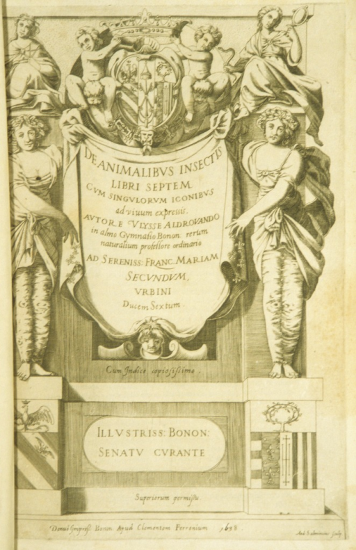 <p>Engraved title page. Two female figures stand on pedestals and hold a scroll on which the title of the work is inscribed. At the head of the page above the central title scroll, two putti straddle two other putti and hold a crown above a coat of arms.</p>