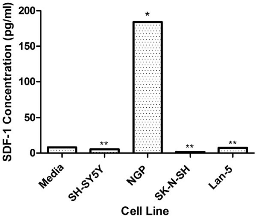 Quantitative Analysis of SDF-1 Secretion by Neuroblastoma Cells. Conditioned media from several neuroblastoma cell lines was collected at maximum confluency. Conditioned media was concentrated from 12 ml to 0.5 ml by filter centrifugation using membranes with 3000 molecular weight cut-offs. Quantitative Analysis of SDF-1 was performed using an enzyme linked immunoadsorbent assay (ELISA). Result represents the mean of three experiments for representatives from each surface expressing class compared to media background levels (*P < 0.005 and **P > 0.05, unpaired t-test).Concentrations are expressed in pg/ml.