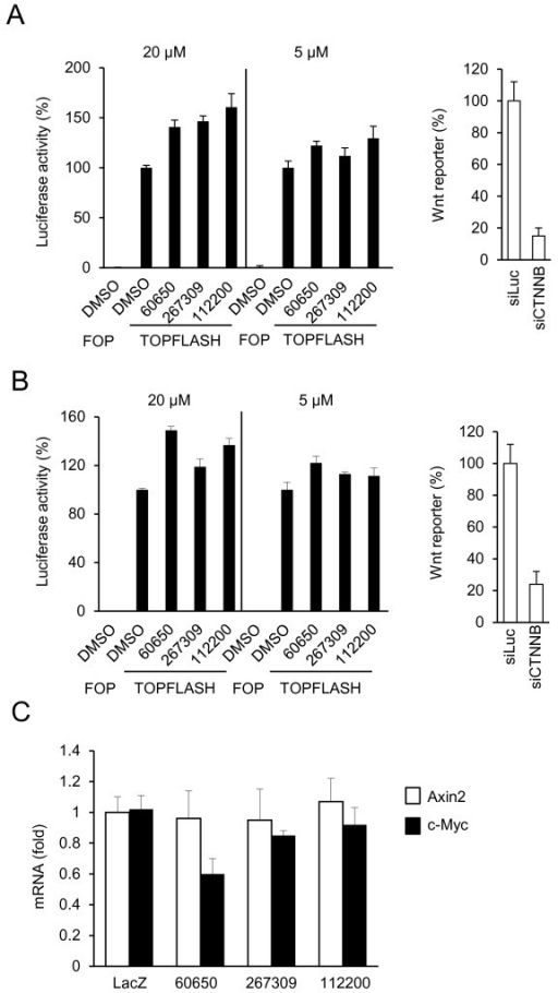 Effect of TRABID inhibitors on Wnt/β-catenin-mediated transcriptional activity. A,B) TRABID inhibitors fail to inhibit Wnt reporter gene activity. HCT-116 or SW480 cells were transfected with FOPFLASH or TOPFLASH and a plasmid expressing Renilla luciferase and incubated with the compounds for 24 hours. As a control the cells were also transfected with an β-catenin siRNA (siCTNNB). Normalized Wnt reporter gene activity is shown. The experiments were repeated three times in triplicates C) Effect of TRABID inhibitors on endogenous Wnt target gene expression in SW480 cells. SW480 cells were incubated with the compounds (20 μM) for 24 hours, and relative AXIN2 and c-Myc mRNA levels were determined by qRT-PCR normalized on the levels of β-actin mRNA. Experiments are performed in triplicates, and data are presented as means ± SD.