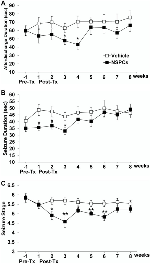 Effect of human NSPC grafting on hippocampal-kindled seizures in rats.The mean values of afterdischarge duration (ADD) in electroencephalograms (A), behavioral seizure duration (B), and seizure stage (C) between vehicle-injected and NSPC-transplanted groups were compared before (pre-Tx) and after NSPC grafting (post-Tx). Error bars indicate ±SEM. huNSPC grafting significantly reduced all three seizure parameters—ADD, behavioral seizure duration, and seizure stage—although this seizure-suppressing effect was not permanent. * Significantly different from the vehicle-injected group at P<0.05; ** significantly different from the vehicle-injected group at P<0.01.