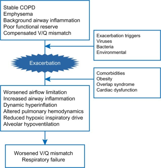 Pathological processes underlying the worsening of respiratory failure at COPD exacerbation.Abbreviations: COPD, chronic obstructive pulmonary disease; V/Q, ventilation–perfusion ratio.