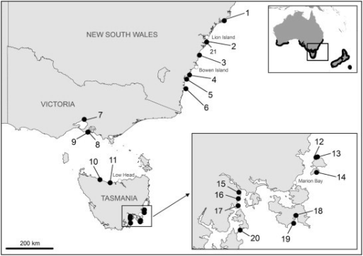 Geographic distribution of sampling locations, southeast Australia. Site details are given in Table 1. The geographic distribution of little penguins (black area) is shown in the top right map (adapted from Marchant and Higgins, 1990).