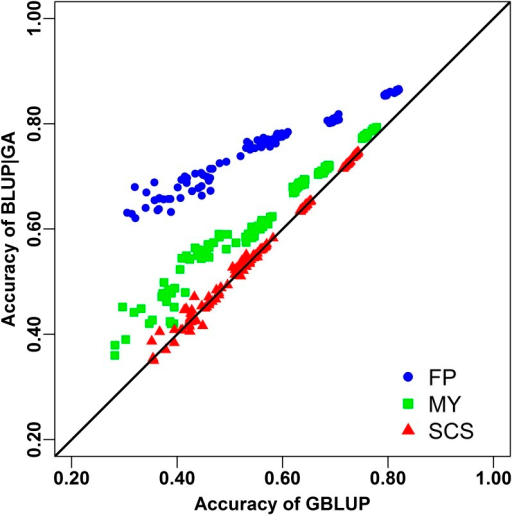 Accuracy of genomic prediction using genomic best linear unbiased prediction (GBLUP) and BLUP-given genetic architecture (BLUP/GA). Points showed the average accuracies of each fivefold cross validation from scenarios using different population sizes. Results for fat percentage (FP), milk yield (MY), and somatic cell score (SCS) are presented with blue filled cycles, green filled squares, and red filled triangles, respectively.