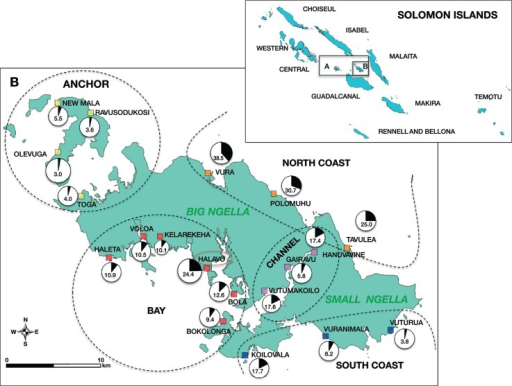 Ngella sampling sites and spatial distribution of P. vivax prevalence (qPCR).The 9 island provinces of SI are shown in the top right inset. A (inset). Central Islands Province. B (inset). Ngella. B. Ngella study catchments and prevalence. Anchor Island (catchments shown in yellow), Bay (catchments in red), Channel (catchments in purple), North Coast (catchments in orange) and South Coast (catchments in blue). The size of the prevalence pie chart reflects village sample size.