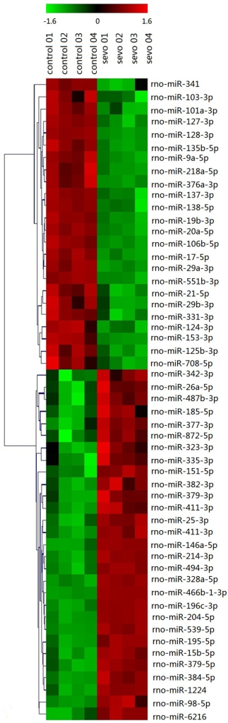 Heat map for the analysis of differentially-expressed miRNA. Each column represents samples and each row represents miRNAs. Red represents upregulated miRNAs and green shows downregulated miRNAs in the sevoflurane group. The first four columns on each figure represent the level of expression in the control group, while the last four columns represent the level of corresponding miRNA expression in the sevoflurane group. The heat map for 53/291 detected miRNAs (18.2%) that were differentially expressed with P<0.01 and signal value >500 are depicted.