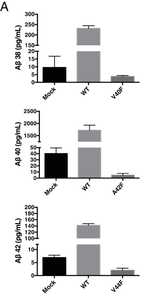 Secreted Aβ levels from V40F, A42F and V44F.(A) Aβ38, Aβ40 and Aβ42 levels measured from V40F, A42F and V44F transfected HEK cells respectively, as well as mock transfected and WT. Aβ levels measured by 6E10 ELISA. Mean ± SD, n = 3.DOI:http://dx.doi.org/10.7554/eLife.17578.014
