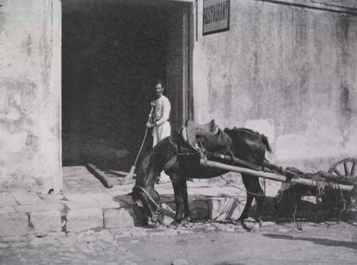 <p>A man sweeps the entrance to a building while a mule and cart are in the street.</p>