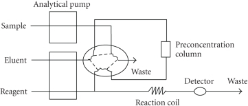 Schematic diagram of the flowinjection concentration online.
