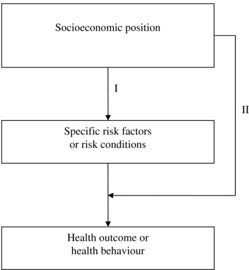 A conceptual framework for studying health impact of socio economic position. Adapted from Whitehead et al [20].