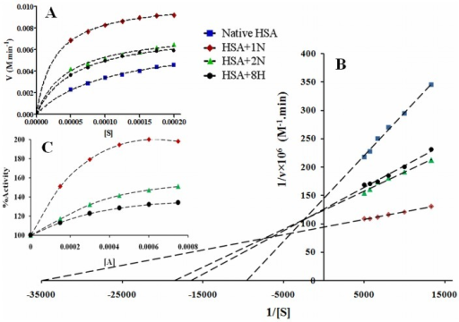 Enzyme kinetics for HSA.(A) is the Michaeil-Menton equation based; (B) is the Lineweaver-Burk plots of reaction velocity versus substrate concentration for enzyme kinetics of HSA in absence and presence of pollutants (1∶5); (C) is the plot of % activity against pollutant concentrations at a fixed substrate and HSA concentration.