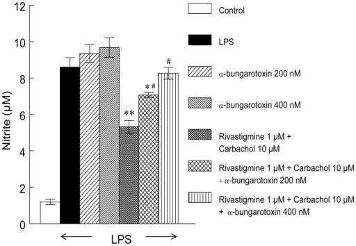 α-bungarotoxin inhibits effect of rivastigmine and carbachol on release of NO in LPS-activated macrophages.Data represents mean ± SEM of 2 independent experiments performed in eight replicates for each sample. Significantly different from LPS alone *p<0.05, **p<0.01; significantly different from macrophages pretreated with rivastigmine+carbachol; # p<0.05.