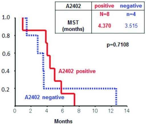 Kaplan-Meier overall survival curve. The MSTs in HLA-A*2402-positive group and HLA-A*2402-negative group were 4.2 and 3.6 months (p= 0.9164), respectively. There was no significant difference.
