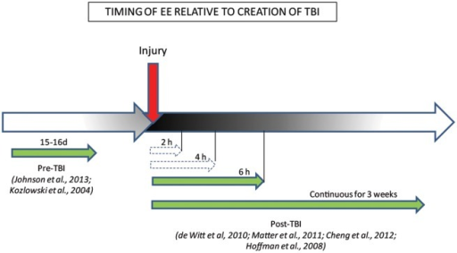Behavioral benefits conferred by the timing/duration of EE relative to creation of TBI. The efficacy of EE treatment when administered pre/post-injury is represented by green full-line arrows which indicate EE timing conditions that ameliorated behaviors, while white dashed arrows indicate EE timing conditions that failed to ameliorate behaviors.