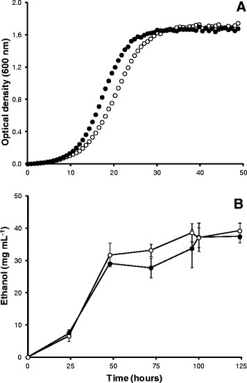Growth (A) and bioethanol fermentation (B; mean values [±S.D]) of turbo yeast (●) and MYA-796 (○) grown using GJ+tfosEp. Note that ethanol concentrations were sampled after yeast cultures had reached stationary phase (typically t48h); ethanol concentrations decreased after t125h.