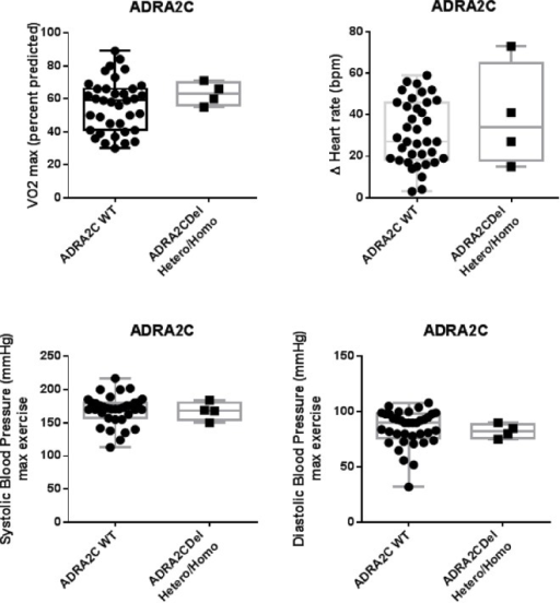 Effect of α2C-adrenergic receptor polymorphism on maximal exercise capacity.Cardiopulmonary exercise parameters are presented according to genotype α2c-AR (WT or 322-325deletion). Box graphs represent median, upper/lower quartiles and maximum/minimum values. No statistically significant correlation (p <0.05) was found between α2C-Del322-325 and variables (peak VO2, ΔHR and BP). Hetero/Homo = heterozygous/homozygous