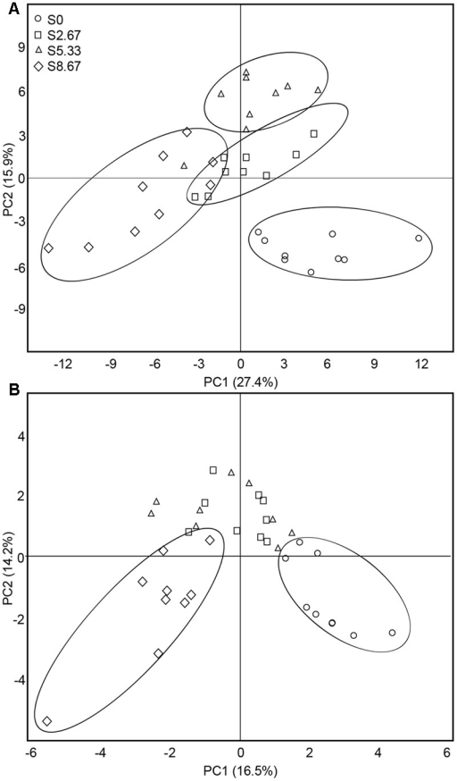 Principal coordinates analysis of bacterial (A) and fungal (B) communities. The values of axes 1 and 2 are the percentages that can be explained by the corresponding axis.