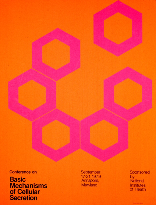 <p>Orange poster with six purple hexagonal figures arranged in a circle.  One of the figures is breaking away from the circle.  The information regarding the conference is listed at the bottom of the poster.</p>