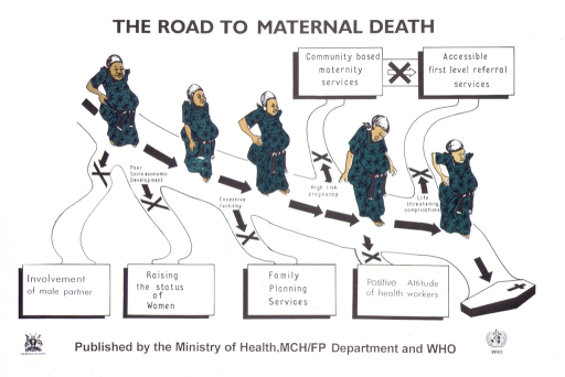 <p>White poster with black lettering.  Title at top of poster.  Visual image is an illustration of a pregnant woman, dressed in green, proceeding down a road that leads to a coffin.  There are six paths leading off the road, each labeled with a different factor that contributes to women's health.  Factors include involvement of male partner, raising the status of women, family planning services, positive attitude of health workers, community-based maternity services, and accessible first-level referral services.  Publisher information below illustration, flanked by publisher logos.</p>