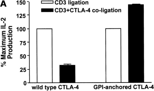 Wild-type CTLA-4, but not GPI-anchored CTLA-4, inhibits IL-2 production upon coligation with the TCR. (A) Wild-type CTLA-4 and GPI-anchored CTLA-4 were incubated with or without 100 ng/ml doxycycline, and incubated with anti-CD3 or anti-CD3 plus anti–CTLA-4 coated beads and soluble anti-CD28 for 48 h. IL-2 in the supernatant was determined by ELISA. The percentage change in IL-2 production in response to anti-CD3 plus anti-CTLA-4 is shown as a bar graph. The response to anti-CD3 beads was taken as 100% for each transfectant. (B) Doxycycline-induced Jurkat T cells were preincubated with or without blocking anti-CTLA-4 ScFv F′ab. After 30 min, beads coated with the indicated antibodies were added to the cells in the presence of soluble anti-CD28 antibodies. IL-2 production was measured after 48 h. Result were statistically significant as analyzed by one-way ANOVA (P < 0.05).