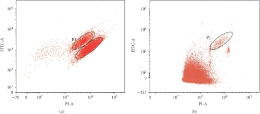 Flow cytometric analysis of (a) stained and nonstained K562. The lower circle shows the non-DAb1 stained cells while upper circle shows the stained cells (P1). All cells have been fixed, permeabilised, and PI stained before cytometry. (b) K562 cells spiked into paternal blood sample. Figure 3 shows 106 cell events. The P1 shows the population of stained K562 among the blood cells.