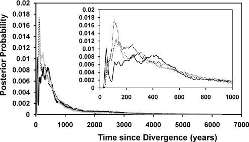 Posterior probability distributions for time since divergence in years. All three runs of the IM program are illustrated; run 1 is black dashed, run 2 is black, run 3 is gray. The inset is an enlargement of years 1–1000.