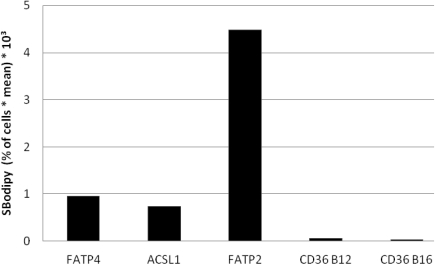 Bodipy fatty acid uptake of RFP-FATP4, CD36-FLAG, FATP2-HA and ACSL1-FLAG transfected HuH7 cells in arbitrary units based on FACS analyses. Bodipy fatty acid uptake was correlated to the protein expression level of transfected protein on a snigle cell basis. The gated overexpressing cells (in % of all cells gated) were multiplied with the corresponding overall mean of the fluorescence signal derived from the Bodipy fatty acid (SBodipy). HuH7 Cells transfeced with pcDNA3 were used as control and as background range and were set as base level of the x-axis. Uptake was performed with B12 fatty acid in experiments with FATP4, FATP2, ACSL1 and CD36 (CD36 B12) or with B16 (CD36 B16). The pictured diagram is representative for three independent experiments.