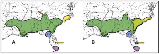 Geographic distribution of genetic populations.Colored shapes indicate the extent and boundaries of each inferred population. 3A shows the distribution of the four major mitochondrial clades: NC (yellow), Gulf/Atlantic (green), Suwannee (blue), and Everglades (magenta). The orange arrow indicates location of the Tennessee subpopulation. The yellow arrow indicates one individual in central FL that clusters with the NC clade. 3B shows the geographic distribution of the STRUCTURAMA-inferred genetic clusters. Color key is the same as 3A, except the yellow shape denotes the range of the Carolinas population inferred by nDNA versus the NC clade inferred by mtDNA. The yellow arrow points to the same individual in 3A, which clusters with the Suwannee population in the STRUCTURAMA analysis.