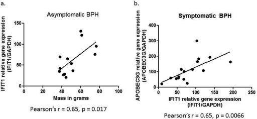 a. Correlation between IFIT1 real time PCR results (IFIT1 relative gene expression – IFIT1/GAPDH) and mass in grams of the asymptomatic BPH samples. Statistical analysis was carried out using a Pearson's correlation, with the Pearson's r = 0.65 and p = 0.0172. b. Correlation between APOBEC3G and IFIT1 relative gene expression (normalized to GAPDH) in the symptomatic BPH samples. Pearson's correlation statistical analysis resulted in a Pearson's r = 0.65 and p = 0.0066.