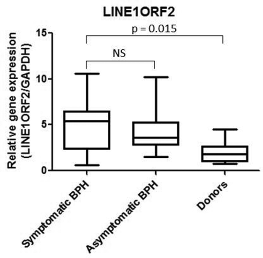 a. LINE1ORF2 real time PCR for symptomatic BPH, asymptomatic BPH and normal prostate tissue from organ donors. The Mann-Whitney statistical test was performed, determining that a statistically significant difference exists between symptomatic BPH and donors (p = 0.015), however there is no statistically significant difference between symptomatic and asymptomatic BPH.