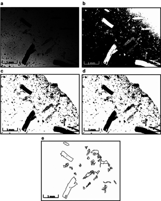 Methodology for root debris size analysis. Light microscopic images were taken at 2.5× magnification for individual samples at each time point. Image J software was used to analyse particle sizes. a–e represents the flow diagram of the image processing algorithm for the analysis. a: A raw image of root debris post-shearing for 240 s, converted to greyscale. b: A thresholded binary image with the particles in white against a black background. c: Using the Freemanual selection tool, the area for analysis has been selected, clearing any shading (here the top right hand corner of the image) caused by shadows of the microscope lens' outer edge, and the image inverted. The particles appear black against a white background. d: Apparent holes or gaps within the root pieces have been filled using the Binary option of the software. e: Using a measured calibration factor of 144 pixels mm−1, only root particles of projected area greater than 0.01 mm2 were measured, assuming that anything less than this was likely to be adventitious debris and dust, and the feret function (defined by the software as the longest distance between any two points along the selection boundary), considered to be the fragment length.