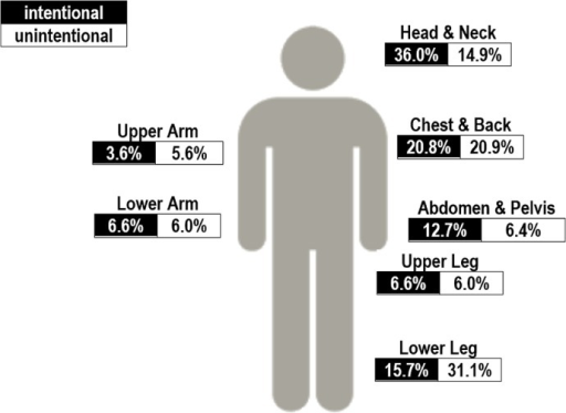 Anatomical Site of Injury by Type, 2003–2014.Data from 2014 limited to first 3 to 5 months.